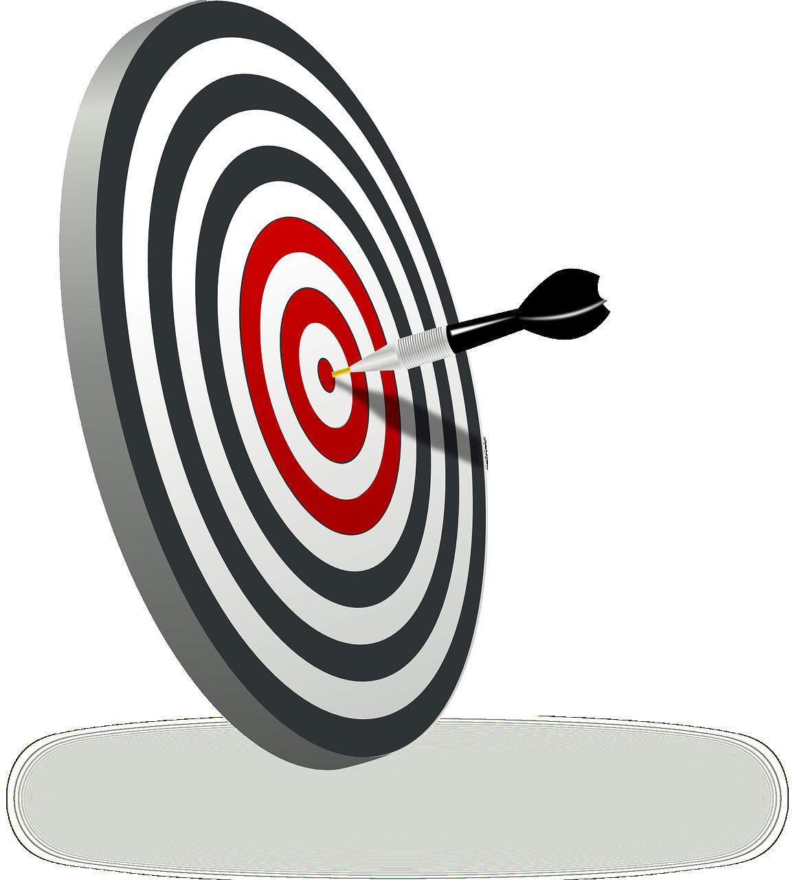 Controllo aziendale-obiettivi